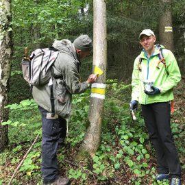 Markierungsarbeiten Friedersdorf-Haßbach