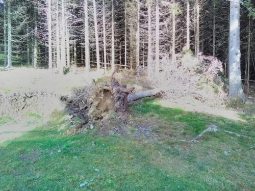 OeTK-Neunkirchen-Alpkogelhuette Fruehjahrsreinigung-2019 20190518-010