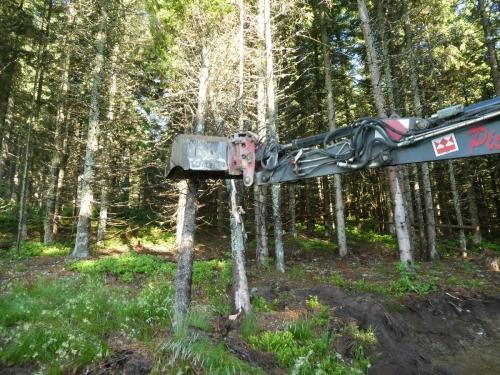 OeTK-Neunkirchen-Alpkogelhütte Baggerarbeiten 20190621-011