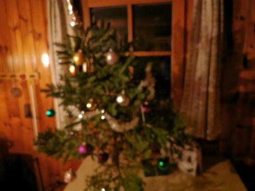OeTK-Neunkirchen-Weihnachtsfeier-Alpkogel-2019-003