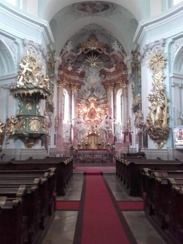 OeTK-Neunkirchen-Seniorenwanderung-Steinwandklamm 20190515-004