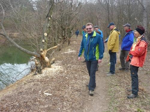 OeTK-Neunkirchen-Seniorenwanderung Biotop-Föhrenwald 20190313-003