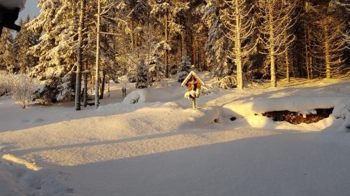 OeTK-Neunkirchen-Alpkogelhuette-Weihnachtsfeier2018-008