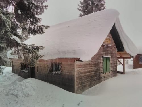 OeTK-Neunkirchen-Alpkogelhuette-20190124-002